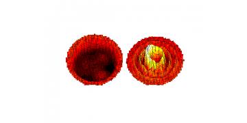Optonor激光全场振动测试分析系统