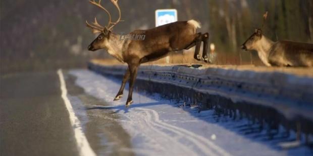 麋鹿测试 检验汽车回避障碍的能力